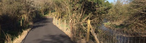"""Ireland would be a """"laughing stock"""" if old national road used for Dublin to Galway Greenway"""